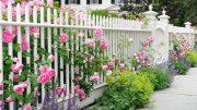 Hàng rào với màu sơn trắng thanh lịch